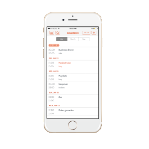 I recently learned that there's one app that can not only do the work of 4, but do it BETTER. LadyPlans gets you more organized in a single app!
