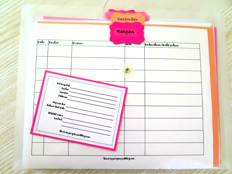 Keep all your family's medical bills organized with this easy to make portable medical binder. Even fits in your purse to take with to doctors appointments!