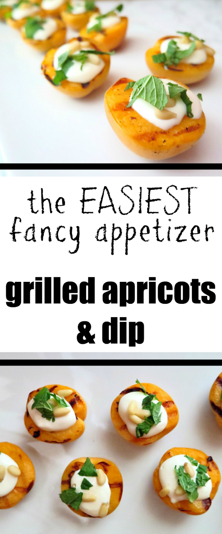 Make this recipe for your next fancy dinner or backyard bbq - grilled apricots & dip. Perfect for a casual summer night!