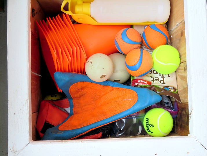 Keep your house squeeky clean with this guide to organize pet supplies throughout the home. Smart solutions and tips to keep dog supplies organized!