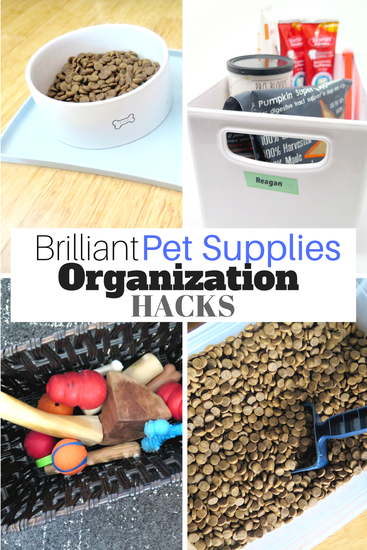 Dog Owner S Guide To Organize Pet Supplies Throughout Your Home